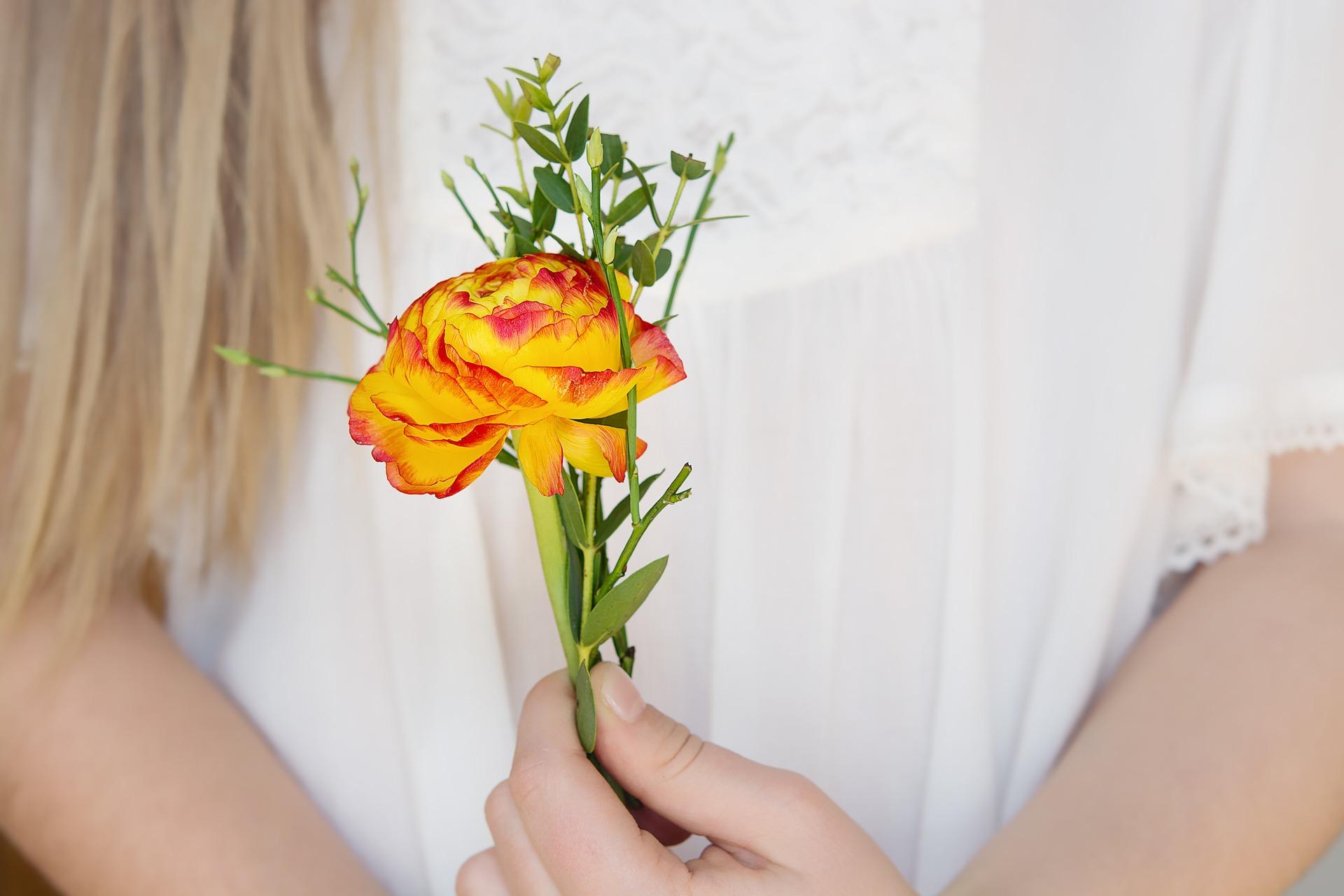 flower-1258744_1920